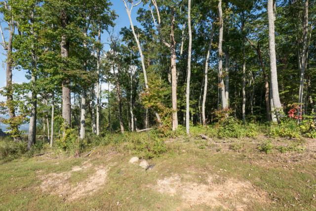 418 Brow Wood Ln, Lookout Mountain, GA 30750 (MLS #1289109) :: The Robinson Team