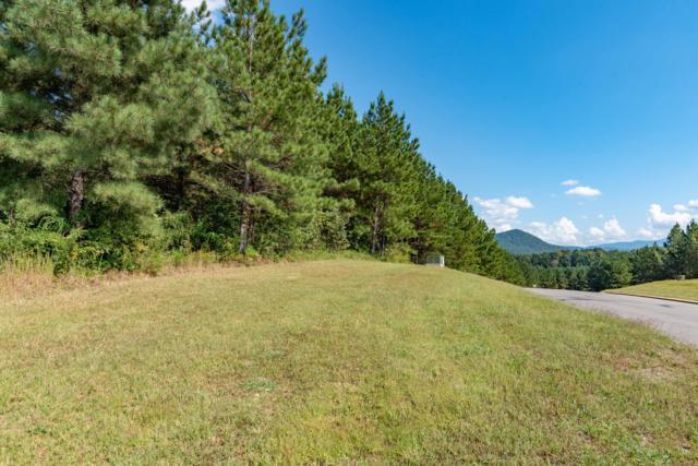 290 Mountain View Cir, Ocoee, TN 37361 (MLS #1289144) :: The Mark Hite Team