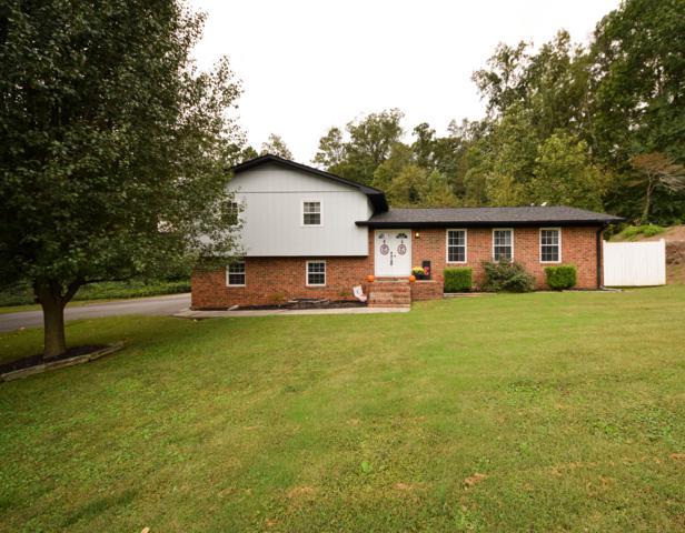 3611 Belmont Cir, Cleveland, TN 37312 (MLS #1289321) :: Chattanooga Property Shop