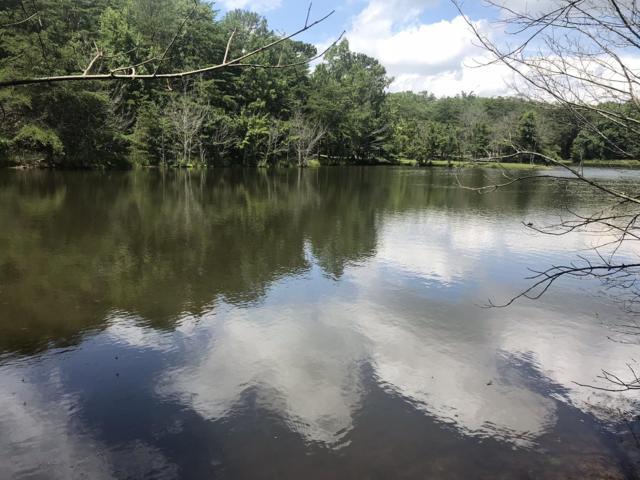 0 Frog Lake Rd #17, Rising Fawn, GA 30738 (MLS #1289412) :: The Mark Hite Team