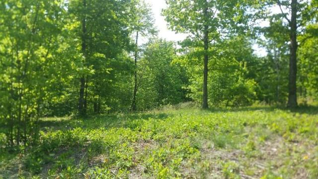 511 Wilderness Way, Dunlap, TN 37327 (MLS #1289557) :: The Robinson Team