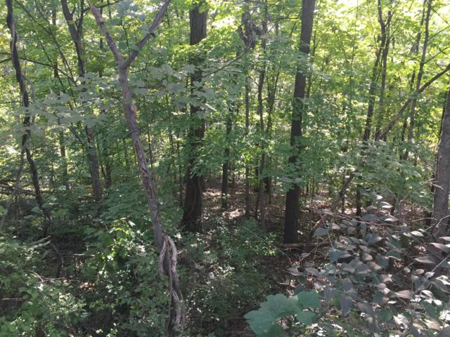 0 Woodlawn Drive, Chattanooga, TN 37411 (MLS #1289927) :: Chattanooga Property Shop