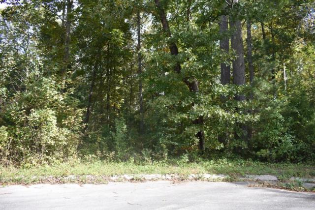 Lot 10 Europa Dr #10, Spring City, TN 37381 (MLS #1289961) :: Keller Williams Realty | Barry and Diane Evans - The Evans Group