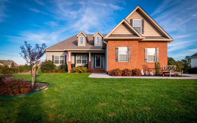 151 Nesting Ridge Rd, Cleveland, TN 37312 (MLS #1289996) :: Keller Williams Realty | Barry and Diane Evans - The Evans Group