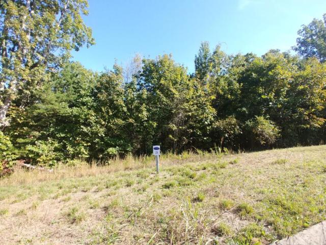 Lot 21 Wood Chase Ln #21, Spring City, TN 37381 (MLS #1290224) :: Keller Williams Realty | Barry and Diane Evans - The Evans Group