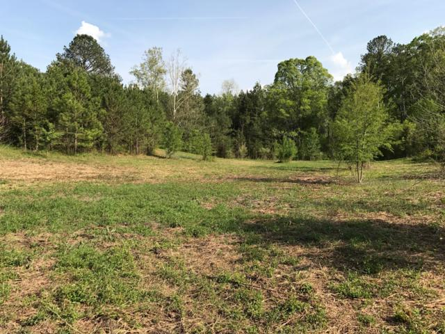 311 Twin Meadows Dr Lot 6, Dayton, TN 37321 (MLS #1290984) :: Chattanooga Property Shop