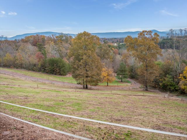 515 NE Old Bacon Rd, Charleston, TN 37310 (MLS #1291253) :: Keller Williams Realty | Barry and Diane Evans - The Evans Group