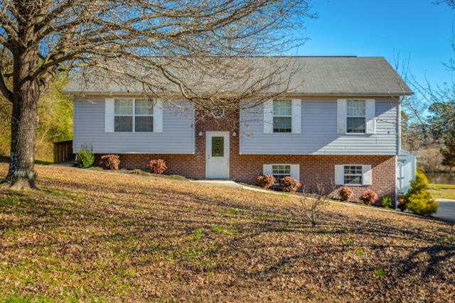 193 Childress Hollow Rd, Chickamauga, GA 30707 (MLS #1292185) :: The Edrington Team
