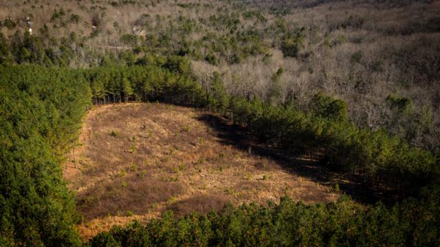 0 Walden Farms Rd #20, Signal Mountain, TN 37377 (MLS #1292199) :: The Robinson Team