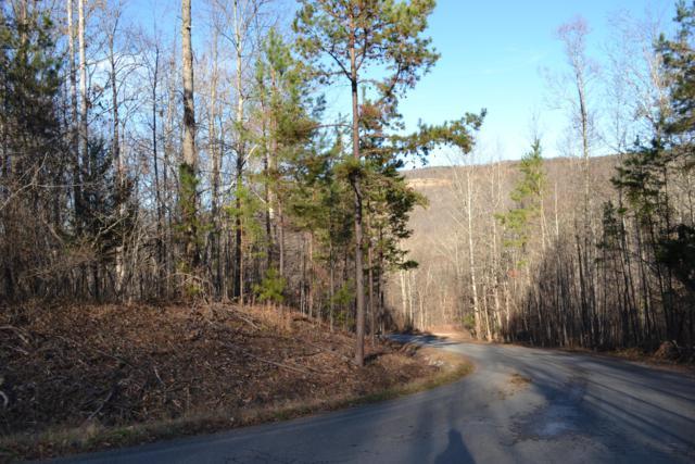 0 Bent Tree Dr #1, South Pittsburg, TN 37380 (MLS #1292673) :: The Mark Hite Team