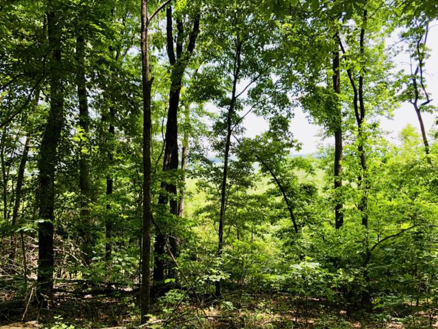 0 Kirkpatrick Rd, Mcdonald, TN 37353 (MLS #1292686) :: Chattanooga Property Shop