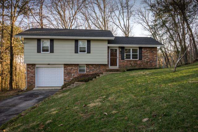 541 Ethyelyn Ln, Hixson, TN 37343 (MLS #1292925) :: Keller Williams Realty | Barry and Diane Evans - The Evans Group