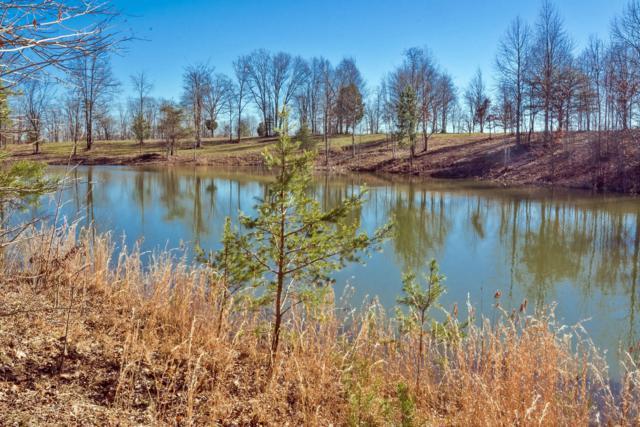 515 Wilderness Way, Dunlap, TN 37327 (MLS #1292975) :: The Robinson Team