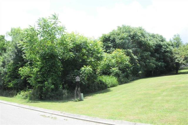 Lot 8 Millstone Dr #8, Dayton, TN 37321 (MLS #1293257) :: Chattanooga Property Shop