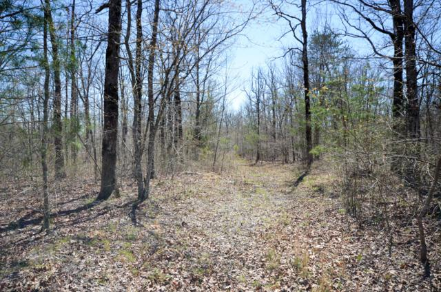 0 Hunters Trail Way #102, Altamont, TN 37301 (MLS #1293386) :: The Edrington Team