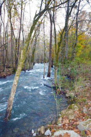 0 Fiery Gizzard Rd, South Pittsburg, TN 37380 (MLS #1293388) :: Chattanooga Property Shop