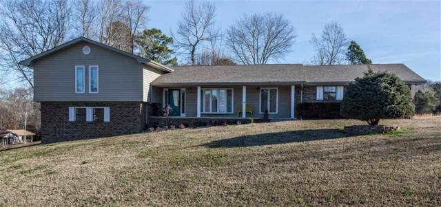 447 Timber Dr, Dayton, TN 37321 (MLS #1293478) :: Keller Williams Realty | Barry and Diane Evans - The Evans Group
