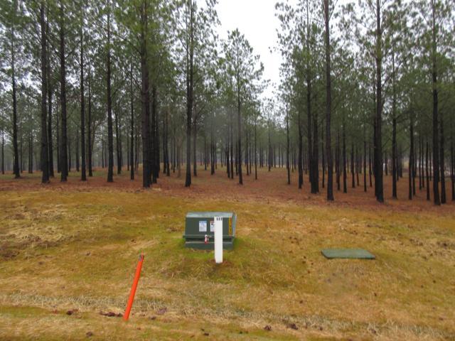 0 Cumberland Cir Lot Sv-177, Jasper, TN 37347 (MLS #1294450) :: Keller Williams Realty | Barry and Diane Evans - The Evans Group