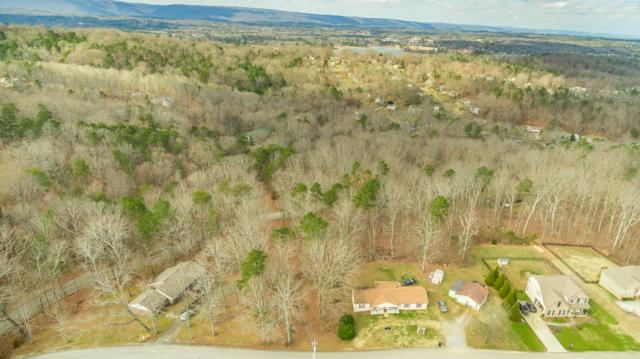 3014 S Gold Point Cir, Hixson, TN 37343 (MLS #1294689) :: The Robinson Team