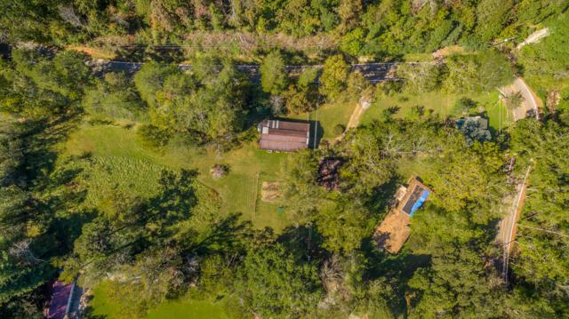 824 Roberts Mill Rd, Hixson, TN 37343 (MLS #1294924) :: The Robinson Team