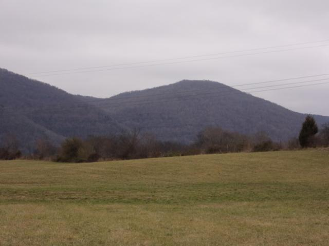 1 Brilin River Rd #2, Pikeville, TN 37367 (MLS #1294944) :: The Robinson Team