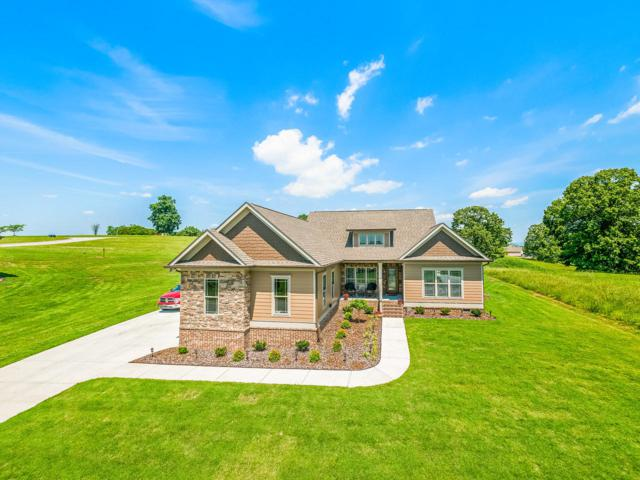 6151 Stoney River Dr, Harrison, TN 37341 (MLS #1295480) :: Keller Williams Realty | Barry and Diane Evans - The Evans Group