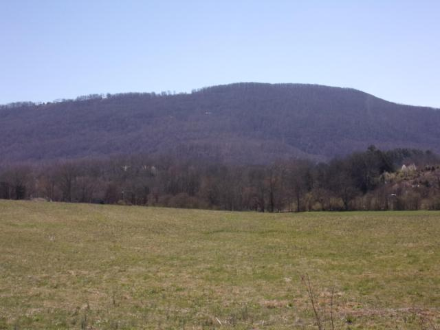 15 Eastwwod Dr #15, Pikeville, TN 37367 (MLS #1295710) :: Chattanooga Property Shop