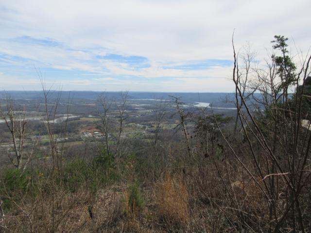 0 River Bluffs Dr 65A & 65S, Jasper, TN 37347 (MLS #1295932) :: The Mark Hite Team