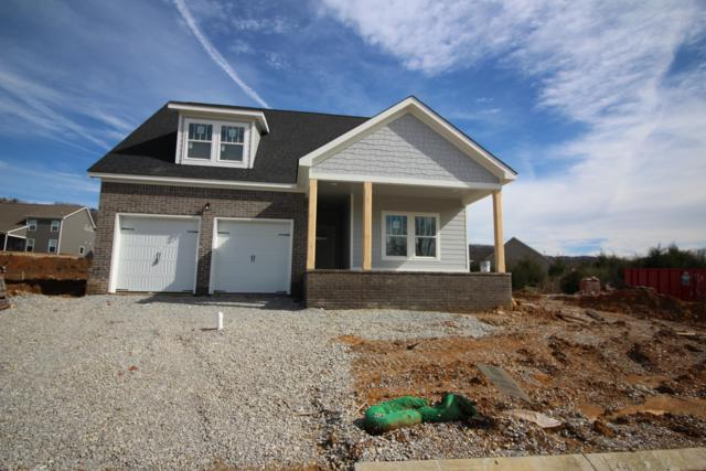 8905 Silver Maple Dr, Ooltewah, TN 37363 (MLS #1295986) :: The Jooma Team
