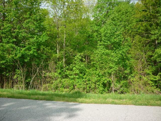 Lot 461 Crystal Springs Rd #461, Rockwood, TN 37854 (MLS #1296010) :: The Edrington Team