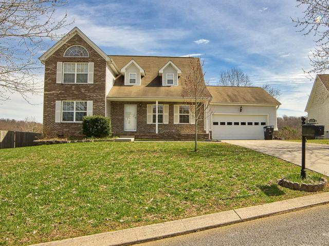6274 Rim Ridge Ct, Harrison, TN 37341 (MLS #1296142) :: Austin Sizemore Team