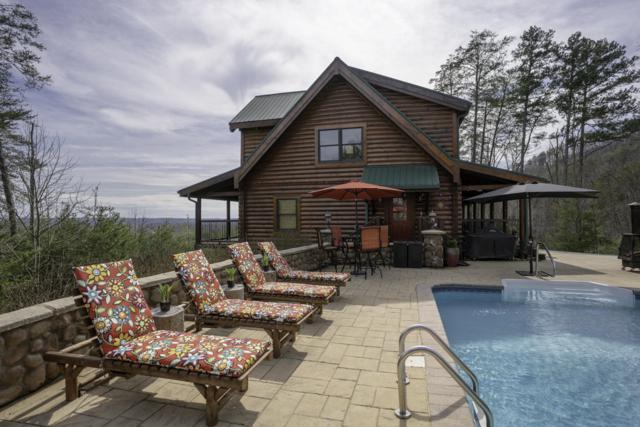 750 Banther Rd, Mcdonald, TN 37353 (MLS #1296232) :: Keller Williams Realty | Barry and Diane Evans - The Evans Group