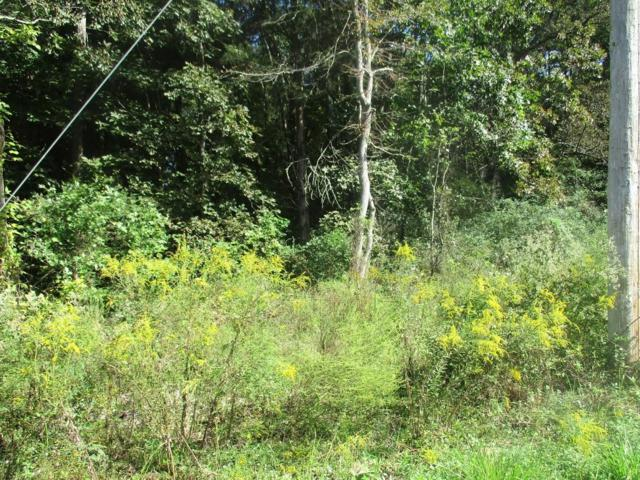 164 Wilbanks Rd, Tunnel Hill, GA 30755 (MLS #1296354) :: Chattanooga Property Shop