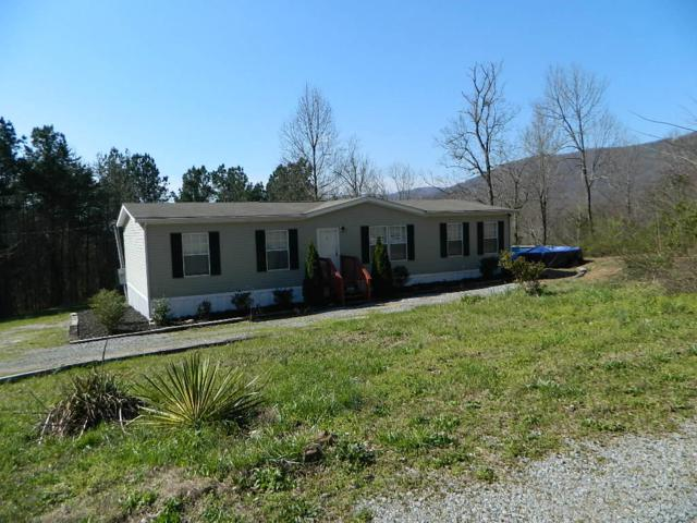 10585 Highway W 136, Chickamauga, GA 30707 (MLS #1296377) :: Keller Williams Realty   Barry and Diane Evans - The Evans Group