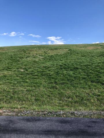 Lot 44 Mill Dr, Decatur, TN 37322 (MLS #1296737) :: Keller Williams Realty | Barry and Diane Evans - The Evans Group
