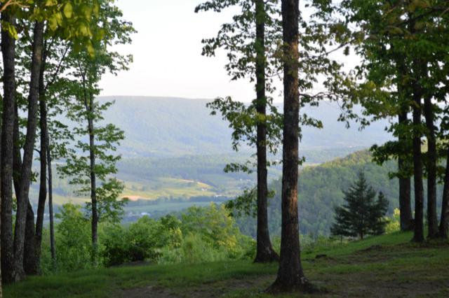 0 Keener Hill Rd, Pikeville, TN 37367 (MLS #1297493) :: Chattanooga Property Shop