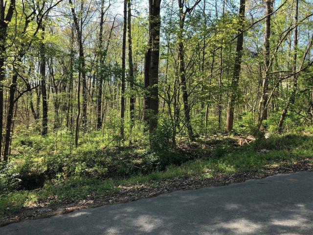 0 Wildwood Dr, Wildwood, GA 30757 (MLS #1297816) :: Chattanooga Property Shop