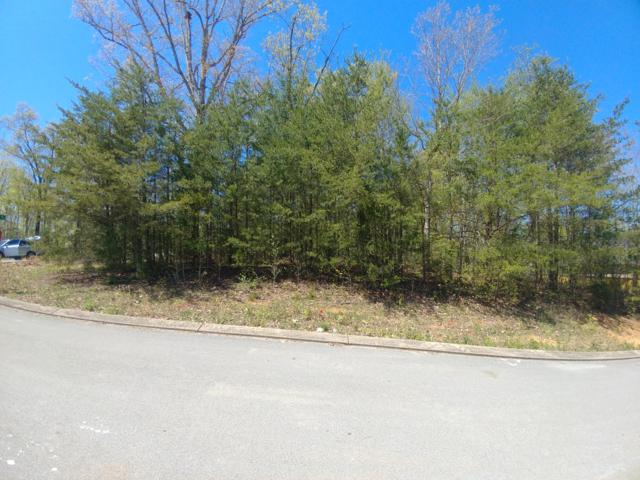 195 Baptist View Dr, Soddy Daisy, TN 37379 (MLS #1297893) :: Chattanooga Property Shop