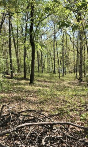 00 Half Moon Shores Dr #32, Ten Mile, TN 37880 (MLS #1298228) :: The Mark Hite Team