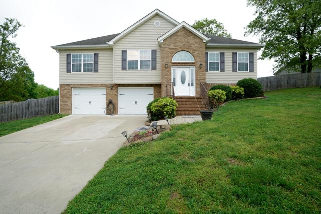 751 Spring Meadows Dr, Ringgold, GA 30736 (MLS #1298383) :: Keller Williams Realty | Barry and Diane Evans - The Evans Group
