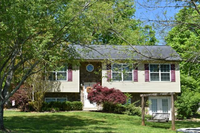 176 Lake Hills Ln, Spring City, TN 37381 (MLS #1298644) :: Grace Frank Group