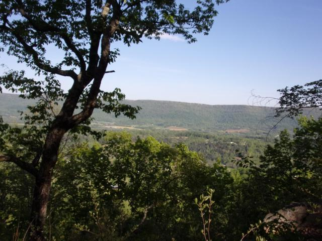 0 Raven Rock Rd #21, Pikeville, TN 37367 (MLS #1298859) :: Chattanooga Property Shop