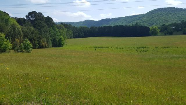 00 Halls Valley Rd, Trion, GA 30753 (MLS #1299088) :: Chattanooga Property Shop
