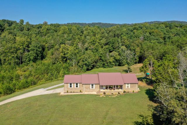 16867 Old State Hwy 28, Pikeville, TN 37367 (MLS #1299210) :: Chattanooga Property Shop