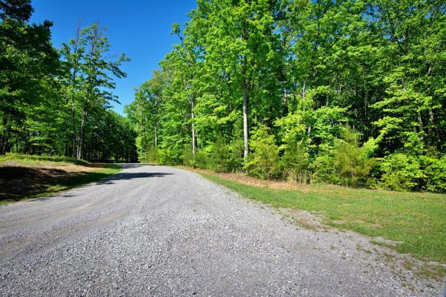 526 Bluff View Dr, Dunlap, TN 37327 (MLS #1299344) :: The Robinson Team