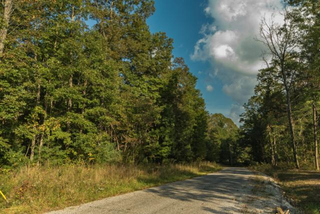 000 Maple Branch, Coalmont, TN 37313 (MLS #1299496) :: Grace Frank Group