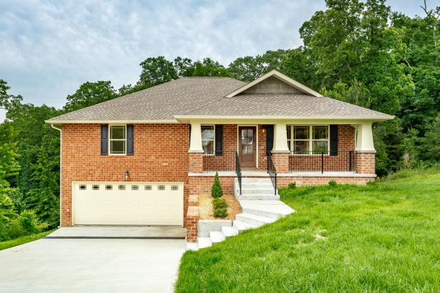 6253 River Stream Dr, Harrison, TN 37341 (MLS #1300001) :: Keller Williams Realty | Barry and Diane Evans - The Evans Group