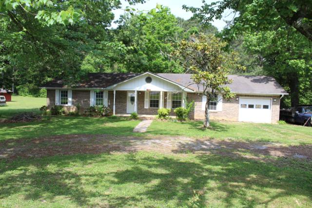 1237 Powerline Dr, Cleveland, TN 37323 (MLS #1300024) :: Keller Williams Realty | Barry and Diane Evans - The Evans Group