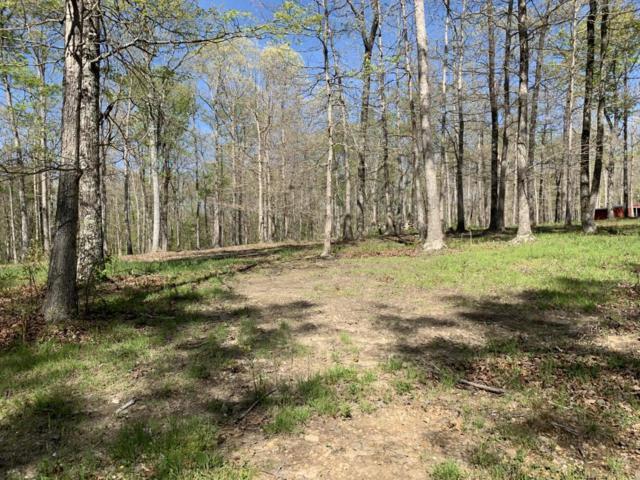 251 Coyote Trail, Dunlap, TN 37327 (MLS #1300191) :: Chattanooga Property Shop