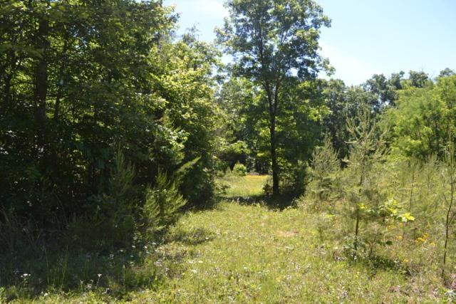 29.17ac Raccoon Ridge Rd., Spring City, TN 37381 (MLS #1300267) :: Chattanooga Property Shop